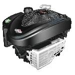 Двигатель B&S 650 E-Series
